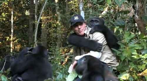 Hombre reencuentra a su gorila 5 años después