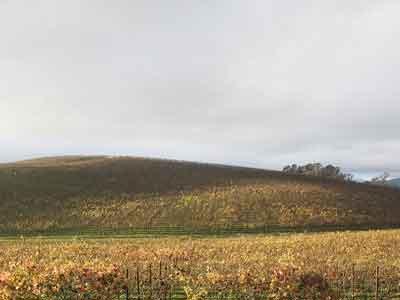 Fotografía actual de la locación