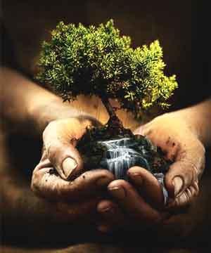 Naturaleza en las manos