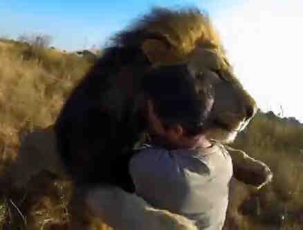 El encantador de leones