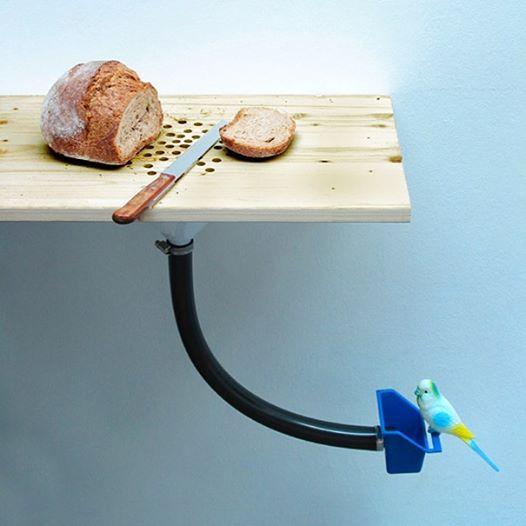 Mesa alimenta pájaros